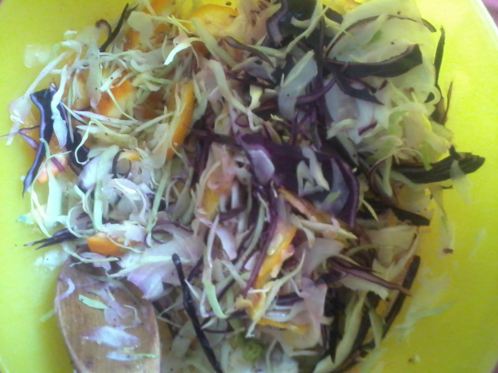 insalata-fantasia-con-cavolo-finocchi-e-arancia