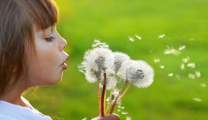 allergie-primavera-coi-probiotici-un-aiuto-piu