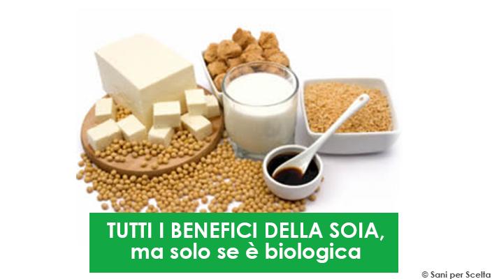tutti-i-benefici-della-soia-ma-solo-se-e-biologica