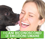 I CANI RICONOSCONO LE EMOZIONI UMANE