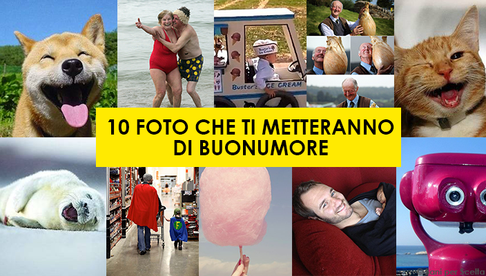 10 FOTO CHE TI METTERANNO DI BUONUMORE
