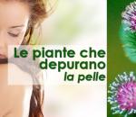 Le piante che depurano la pelle