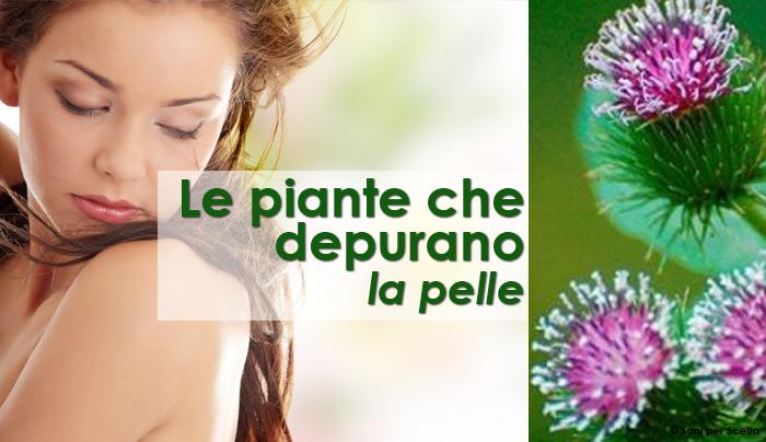 le-piante-che-depurano-la-pelle