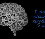 il piombo invecchia il cervello di 5 anni