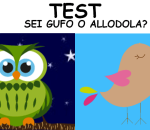 Test: sei gufo o allodola?